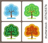one tree at different times of... | Shutterstock .eps vector #257625376