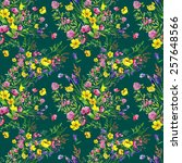 seamless pattern  field of... | Shutterstock . vector #257648566