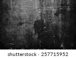 texture or background wall of... | Shutterstock . vector #257715952