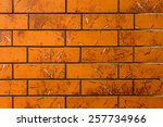abstract background with a... | Shutterstock . vector #257734966