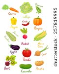 Fresh Ripe Vegetables From The...