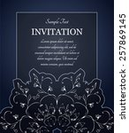 invitation or greeting card...   Shutterstock .eps vector #257869145