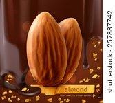almonds  vector background | Shutterstock .eps vector #257887742