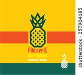 pineapple icon. pineapple... | Shutterstock .eps vector #257904185