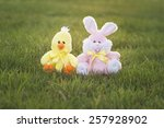 An Easter Bunny And Chick Are...