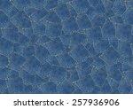 blue jeans pocket for background | Shutterstock . vector #257936906