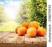 orange fruits on table  | Shutterstock . vector #258070952