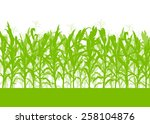 corn field vector background... | Shutterstock .eps vector #258104876