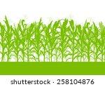 corn field vector background... | Shutterstock .eps vector #258104876