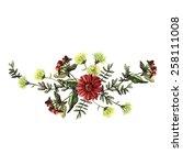 watercolor floral decoration. ... | Shutterstock .eps vector #258111008