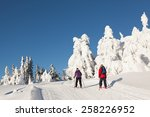 two cross country skiers... | Shutterstock . vector #258226952