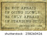 Be Not Afraid Of Going Slowly ...