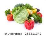 fresh vegetables | Shutterstock . vector #258311342