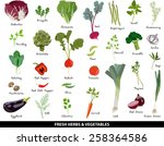 fresh vegetables and herbs | Shutterstock .eps vector #258364586