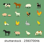 Farm Animals Set In Flat Vecto...