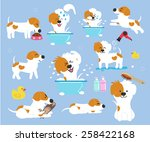 cute dog on blue background  ... | Shutterstock .eps vector #258422168