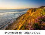 Flowers And View Of The Pacific ...