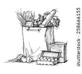 hand drawn vector illustration  ... | Shutterstock .eps vector #258666155
