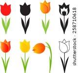 isolated spring flowers vectors ... | Shutterstock .eps vector #258710618