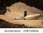 vintage golden pen and ancient... | Shutterstock . vector #258744836