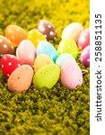 easter eggs on the grass carpet ... | Shutterstock . vector #258851135