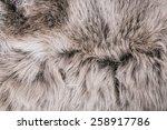 White Grey Wolf Fox Fur Natura...