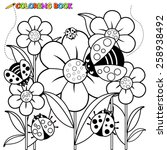ladybugs and flowers coloring... | Shutterstock .eps vector #258938492