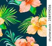 hibiscus. tropical plants... | Shutterstock . vector #258959036