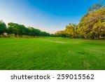 summer park  trees and green...   Shutterstock . vector #259015562