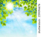 vector illustration of tree... | Shutterstock .eps vector #259096676