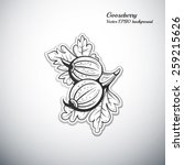 gooseberry outline icon vector... | Shutterstock .eps vector #259215626
