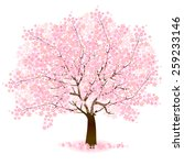 cherry blossom background | Shutterstock .eps vector #259233146