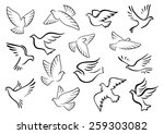 pigeon and dove birds... | Shutterstock .eps vector #259303082