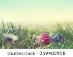 Painted Easter Eggs In The Field