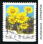 Small photo of SWEDEN - CIRCA 1995: stamp printed by Sweden, shows Alpine Arnica, circa 1995