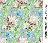 seashell  coral  alga ... | Shutterstock . vector #259540352