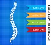 infographic medic spine card | Shutterstock .eps vector #259549895