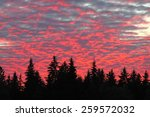 fire in the sky  brazen sky  | Shutterstock . vector #259572032