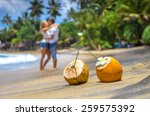 cocunut on a tropical beach in... | Shutterstock . vector #259575392