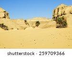 Sahara desert and palm trees, Western desert, Egypt, Africa - stock photo