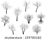 Stock vector collection of trees silhouettes 259785182