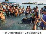 Small photo of - San Andres, Colombia, January 10th 2014. San Andres is a coral island in the Caribbean Sea. Some tourists all around a big Stingray are touching it one after the other.