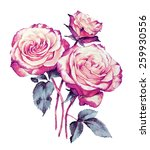 roses bouquet watercolor ... | Shutterstock . vector #259930556