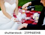 beautiful wedding couple is... | Shutterstock . vector #259968548