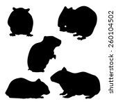 Stock vector hamster set of silhouettes vector 260104502