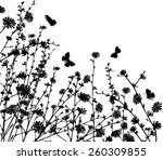 chicory | Shutterstock .eps vector #260309855