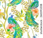 beautiful peacock pattern.... | Shutterstock . vector #260391038