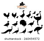 Poultry Silhouettes Isolated O...
