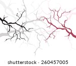 branch | Shutterstock .eps vector #260457005