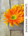 Gerbera Flower Over Wooden...